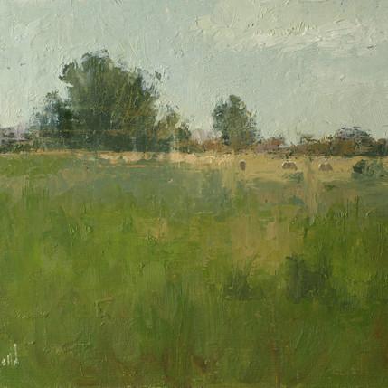 North-Field-2.jpg