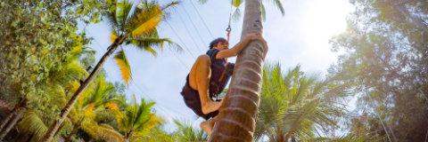 Coco Climb.jpg
