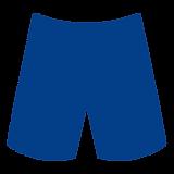 Board Shorts 300x300.png