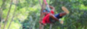 Jungle Swinger.jpg