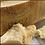 Thumbnail: Parmigiano Reggiano DOP