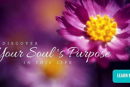 Soul Genesis: Connecting Soulful Awareness