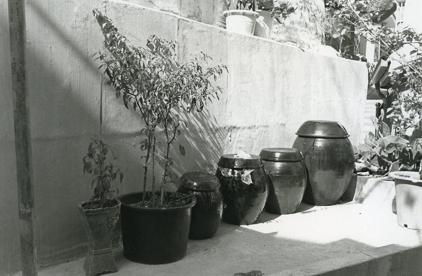 写真家蔵真墨 / masumi kuraの公式ホームページです。