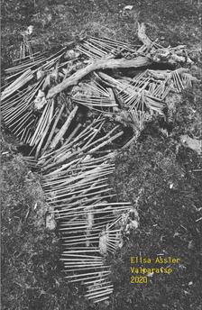 Catálogo digital, 20 años, 164 pag, Valparaíso.