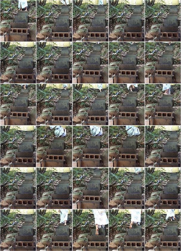 nava waxman - cicada intervals.jpg