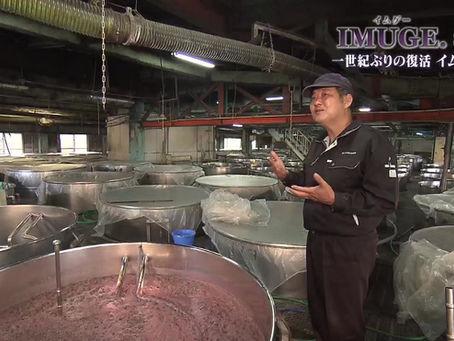 """琉球朝日放送で、四夜にわたり""""イムゲー""""の魅力にせまる番組が放送されます。"""