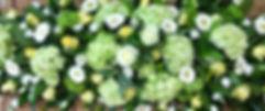 IMG_3187_edited_edited.jpg
