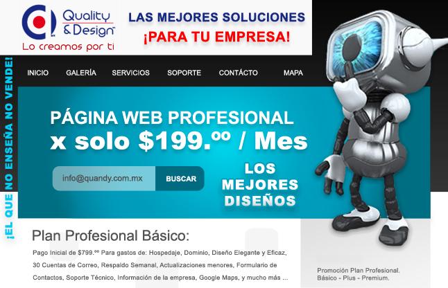Paginas WEB.jpg