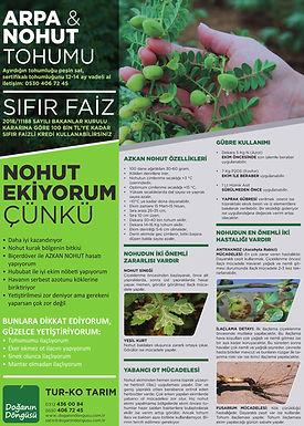 poster_arpa-nohut.web.jpg