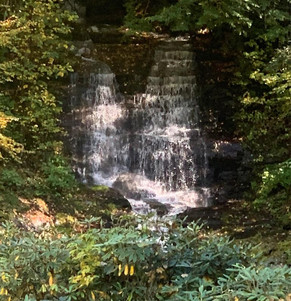 lot 48 falls entrance.jpg