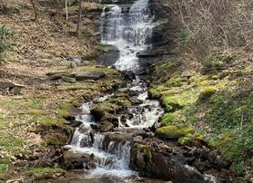 lot 7 waterfall.jpg