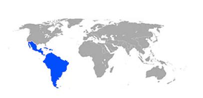 ESC Mercado