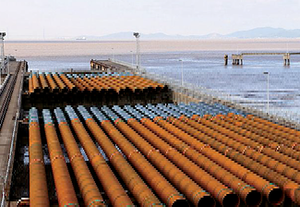 ESC Steel Mono Piles