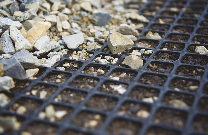 Geogrids for soil reinforcement