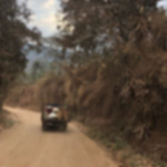 Country roads.jpg
