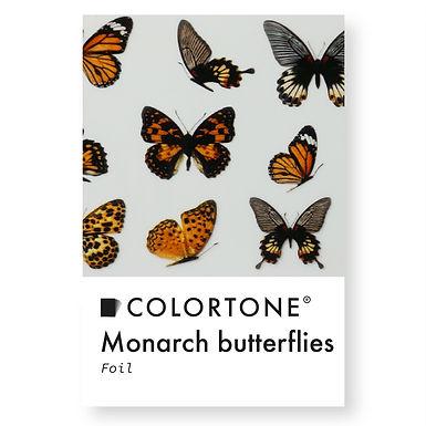 Clear Monarch butterflies foil