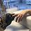 Thumbnail: Biab + E manicure 18/06/2021