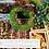 Thumbnail: Virtual Wreath Course