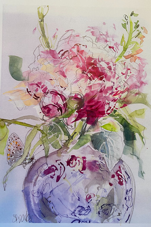 Peony in Chinese Rose Albion