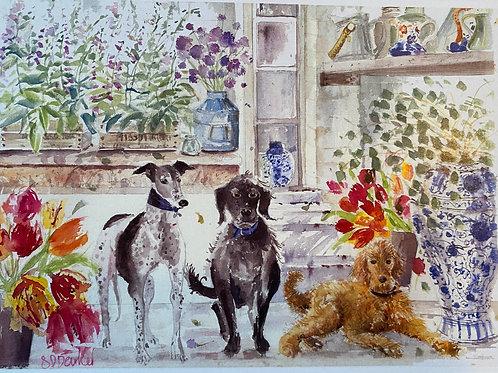 Posh Dogs in Florist