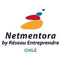 LOGO NETMENTORA.png