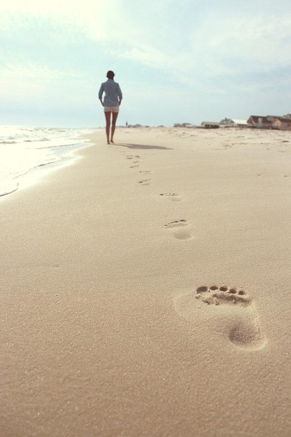 beach-731137_960_720.jpg