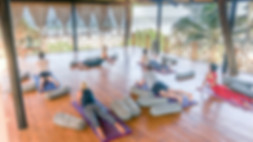 Join Alpha Yoga School for this 200-hour Vinyasa Flow and Ashtanga Vinyasa Yoga Teacher Training in Goa, India | Alpha Yoga School | Residential, all-inclusive Yoga Teacher Training in Goa, India | Deepen your personal yoga practice | Experienced Yoga Teachers | Learn yoga asana safe alignment and adjustment, functional yoga anatomy, yoga Vedic philosophy, practice meditation, learn pranayama techniques, study yoga teaching methodology, correct vinyasa sequencing | Come as a student, leave as a teacher | Teachers trained in India | Practice and study yoga in an open yoga studio right by the beach in Anahata Yoga Retreat Center in Goa, India | 200-hr Vinyasa Flow and Ashtanga Vinyasa Yoga teacher training in a beach-front yoga studio in Ashwem Beach, Goa, India | Alpha Yoga School Yoga Teacher Training Courses are registered with Yoga Aliance USA and Yoga Professionals UK