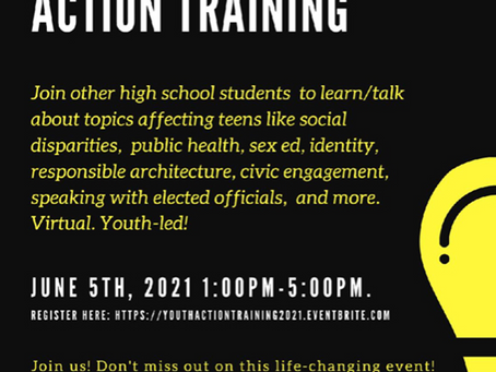 The Westchester County Youth Council Youth Action Training