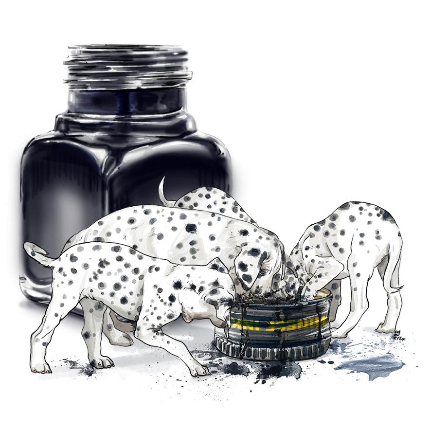 Origine des Dalmatiens