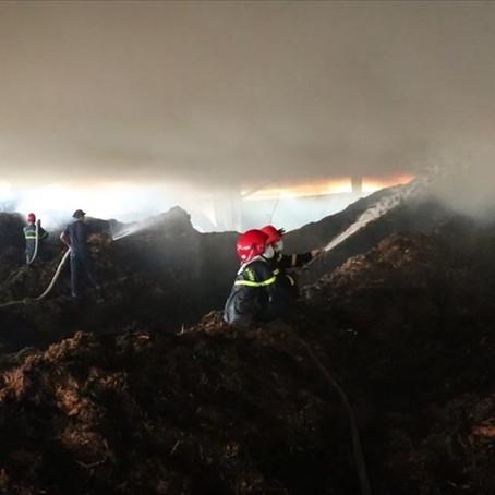 Quảng Ngãi: Cháy xưởng chứa bã mía