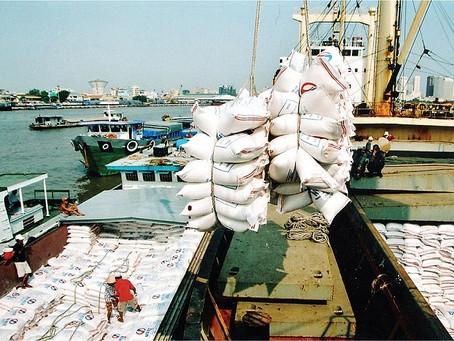 Doanh nghiệp xuất khẩu gạo: Khó chồng khó