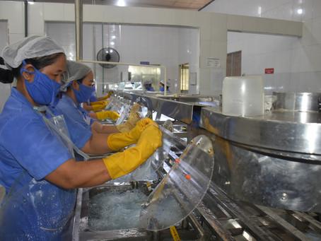 Bến Tre: 80% lao động nông thôn sau học nghề đã có việc làm