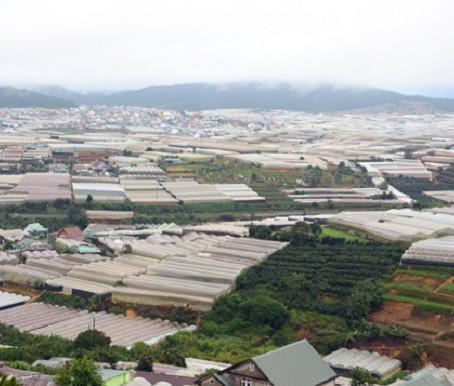 Lâm Đồng: Dự án Khu Công nghiệp – Nông nghiệp Tân Phú thất bại do không có nhà đầu tư