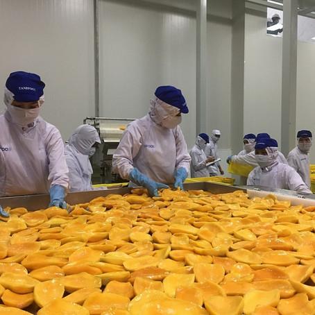 Việt Nam đứng thứ 17 về xuất khẩu nông sản nhưng giá trị chỉ đạt gần 2% thị phần thế giới
