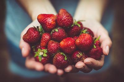 Hand Held Berries