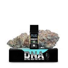 Plug n Play   DNA - Syndicate OG
