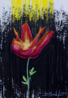 Femme-Fleur 2