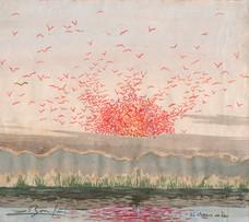 Les oiseaux de feu