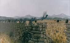 Un mur plein d'esprit