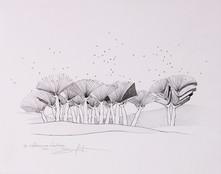 « Les efflorescences d'automne »