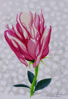Femme-Fleur 3