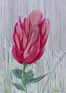 Femme-Fleur 1