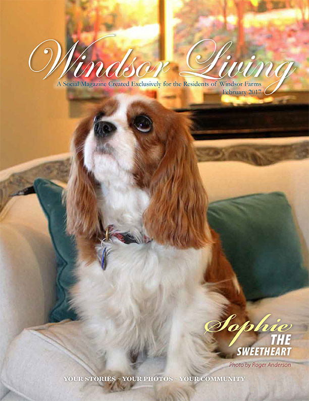 Windsor Living