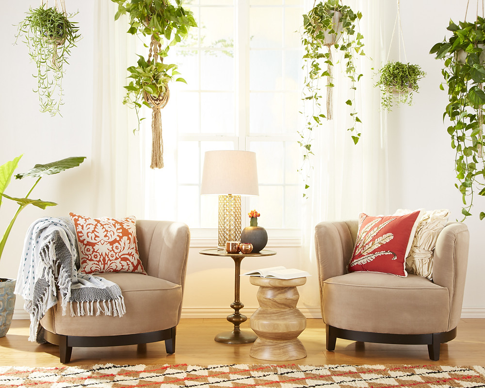 Long hanging plants in boho chic style sitting room