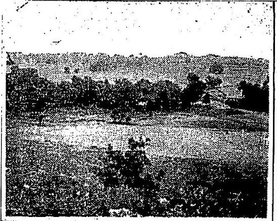 Photo 1923-7-8 Oklahoman Pg 17 - Dornick