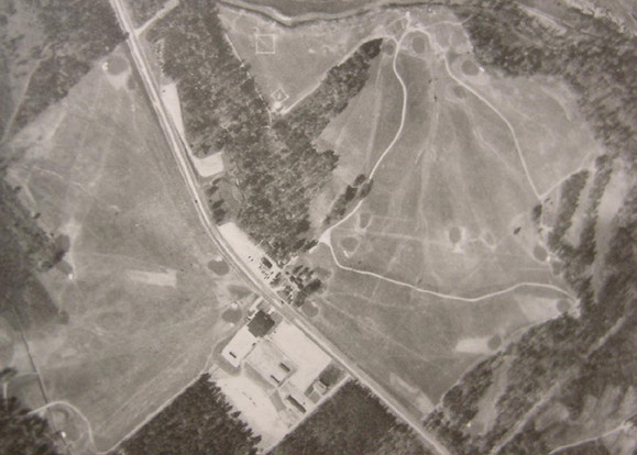 Aerial 1940 Reynolds Park (Clouser).jpg