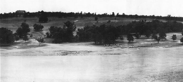 Photo Dornick #10 Circa 1914.jpg