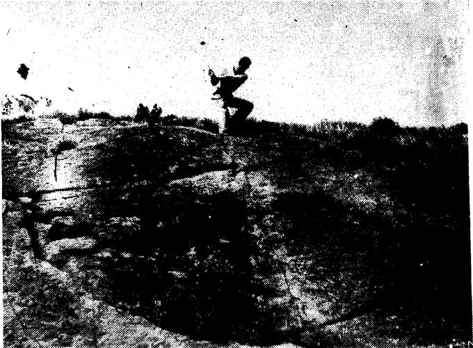 Photo 1937-6-6 Daily Ardmoreite Pg 10 -
