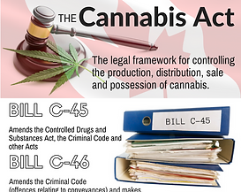 Bill C-45 The Cannabis Act
