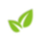 plant-logo-png-1.png